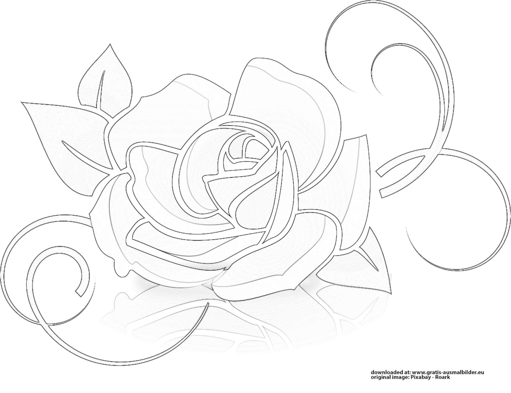 ausmalbild rose kostenlos  cartoonbild
