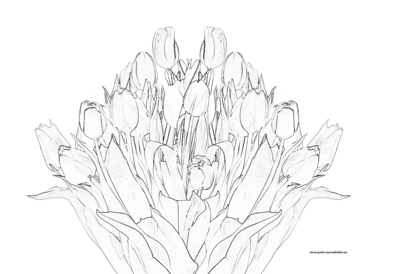 strauß tulpen - gratis ausmalbild