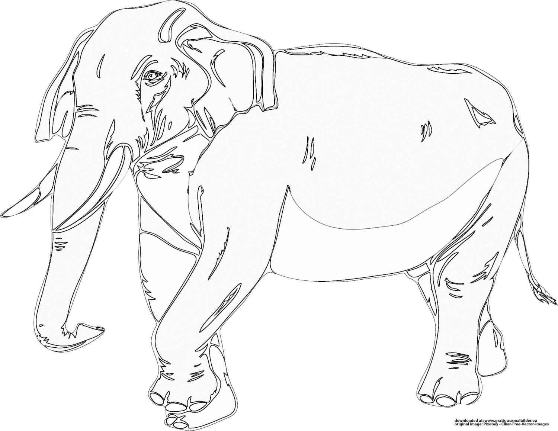 elefant  gratis ausmalbild