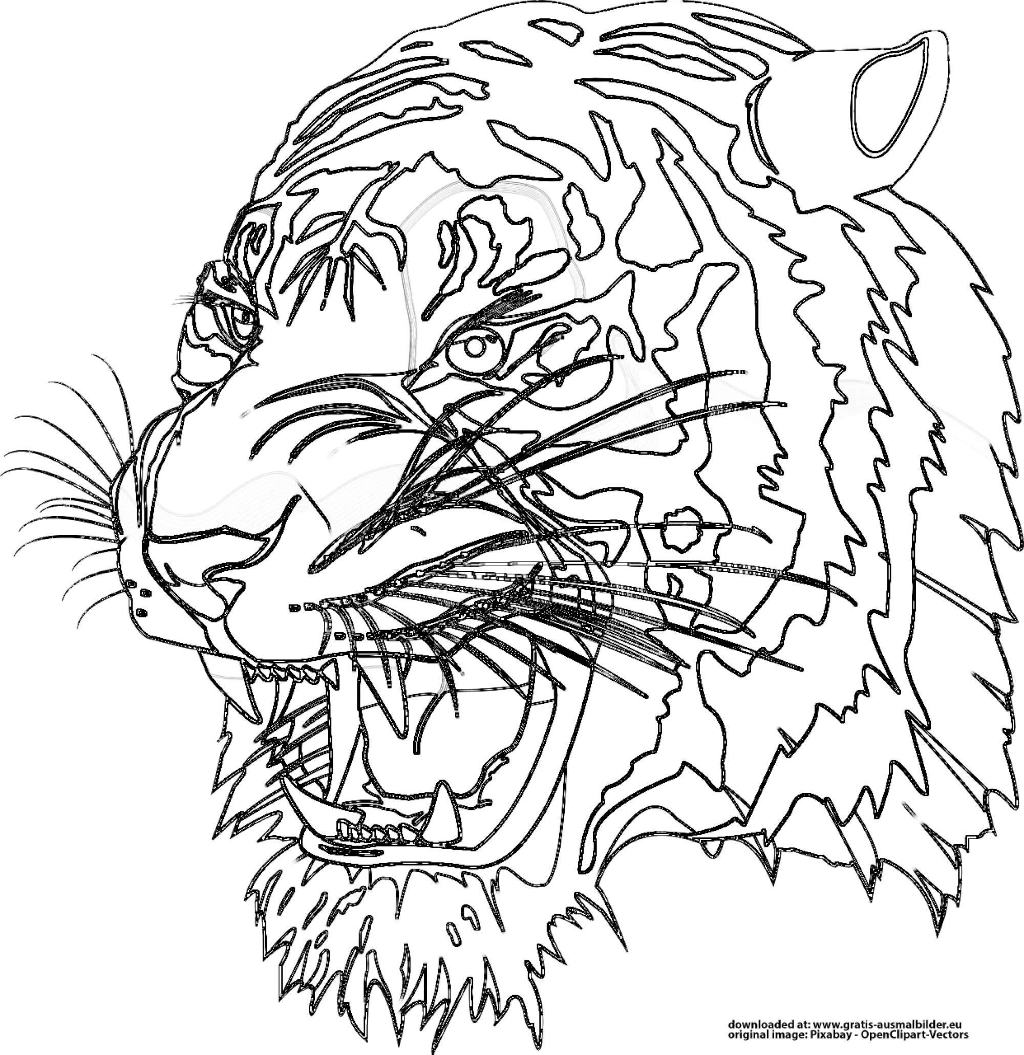 Tiger ausmalbilder kostenlos Malvorlagen Kostenlos