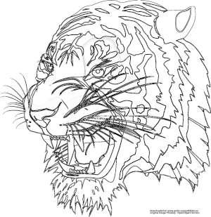 tiger - gratis ausmalbild