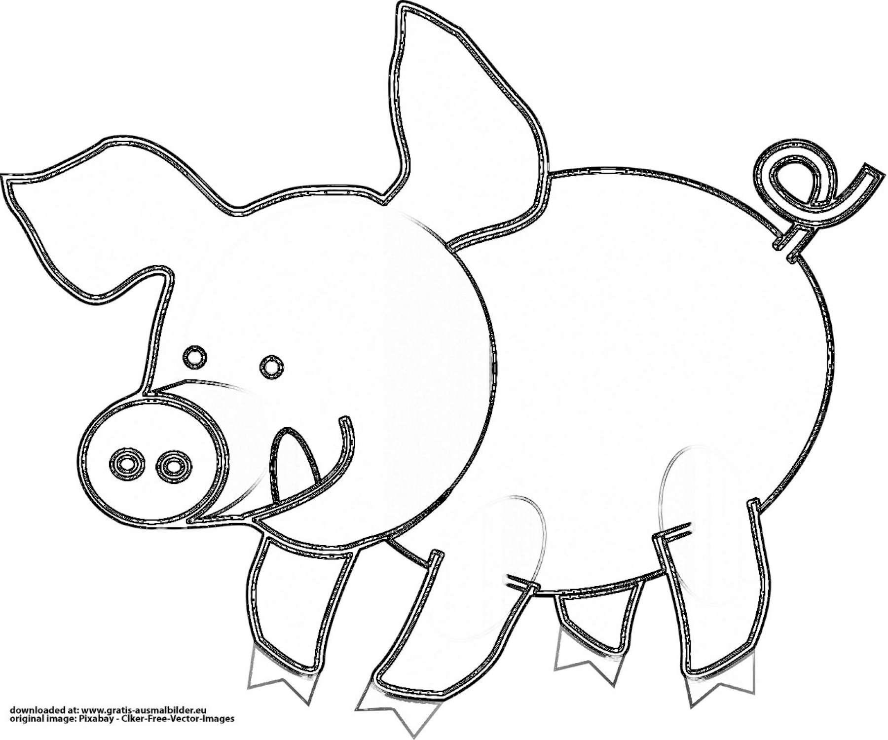 schwein mit zunge  gratis ausmalbild